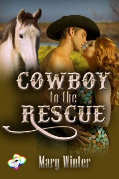 Cowboy To The Rescue, Mary Winter