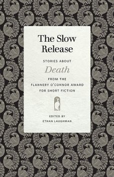 The Slow Release, Robert Anderson, Nancy Zafris, Melissa Pritchard, Monica Robinson, Anne Raeff, Molly Giles, Barbara Sutton, Gina Ochsner, Anne Panning, Lisa Graley, Toni Graham, Dianne Nelson Oberhansly, Ed Allen, Jacquelin Gorman, Mary Clyde