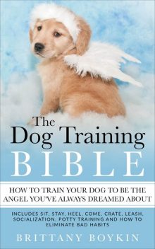 The Dog Training Bible – How to Train Your Dog to be the Angel You've Always Dreamed About, Brittany Boykin