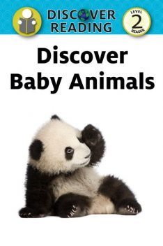 Discover Baby Animals, Xist Publishing