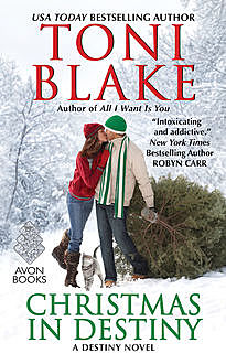 Christmas in Destiny, Toni Blake