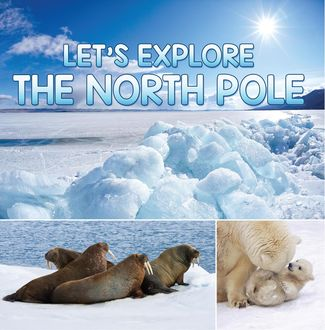 Let's Explore the North Pole, Baby Professor