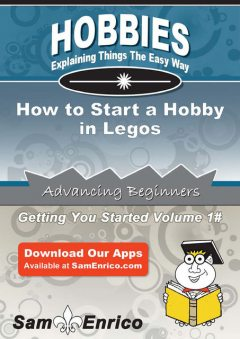 How to Start a Hobby in Legos, Bailey Weeks