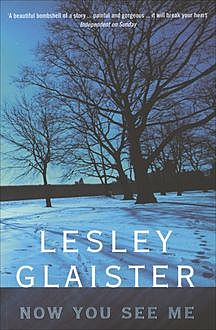 Now You See Me, Lesley Glaister