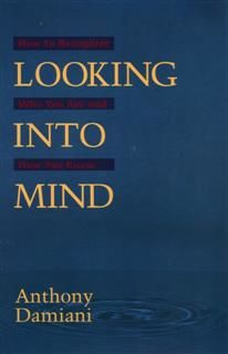 Looking into Mind, Anthony Damiani
