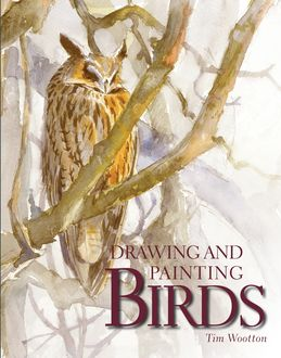 Drawing and Painting Birds, Tim Wootton