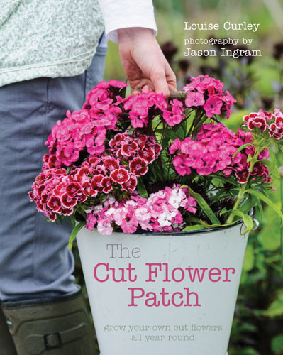 The Cut Flower Patch, Louise Curley