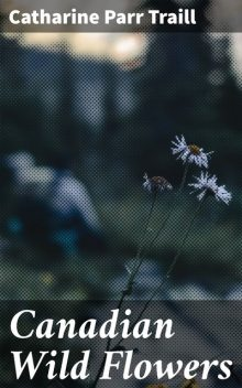 Canadian Wild Flowers, Catharine Parr Traill
