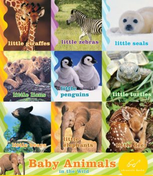 Baby Animals in the Wild, Chronicle Books