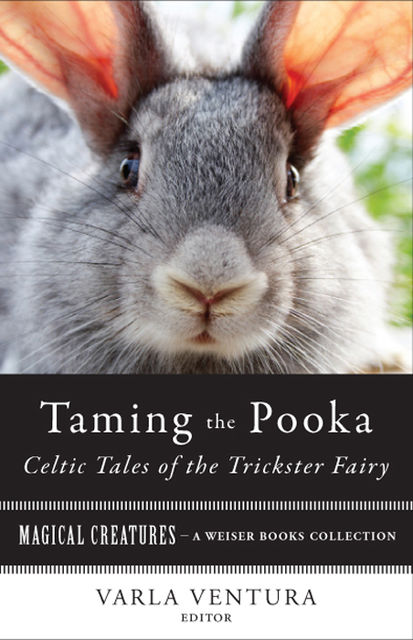 Taming the Pooka, Celtic Tales of the Trickster Fairy, William Butler Yeats, T.Crofton Croker