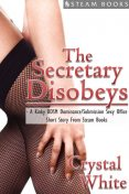The Secretary Disobeys – A Kinky BDSM Dominance/Submission Sexy Office Short Story From Steam Books, Steam Books, Crystal White