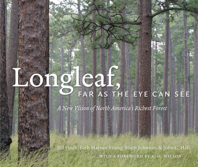 Longleaf, Far as the Eye Can See, John Hall, Beth Maynor Young, Bill Finch, Rhett Johnson
