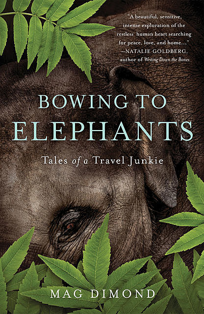 Bowing to Elephants, Mag Dimond