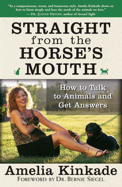 Straight from the Horse's Mouth, Amelia Kinkade
