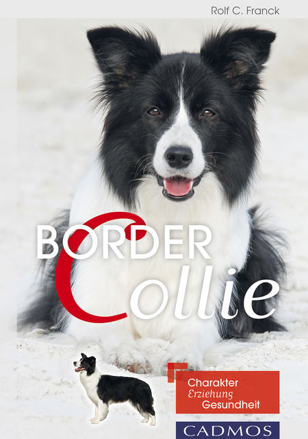 Border Collie, Rolf C. Franck