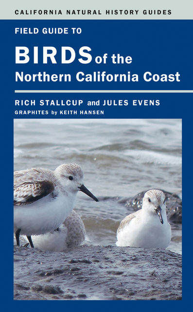 Field Guide to Birds of the Northern California Coast, Jules Evens, Rich Stallcup