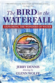 The Bird in the Waterfall, Jerry Dennis