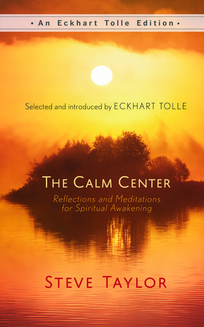 The Calm Center, Steve Taylor