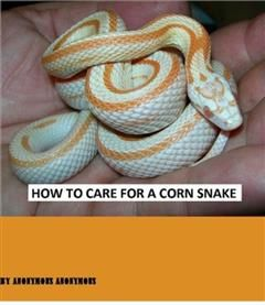 How to Care for a Corn Snake, Snake eBooks
