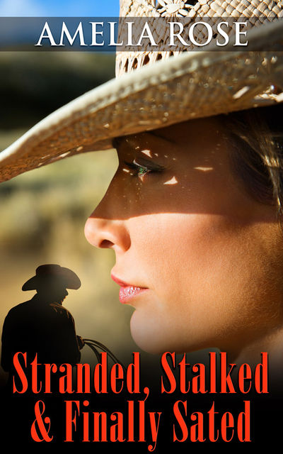 Stranded, Stalked and Finally Sated, Amelia Rose