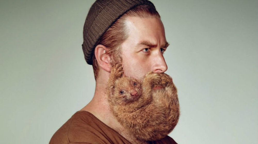 Dog Days, Beard Trends, and the Best of Non-Fiction, University of Chicago Press