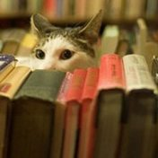 Libros de gatos, Isabel Jazmín Angeles