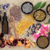 Natural Remedies, Senem Cengiz