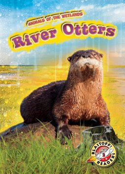 River Otters, Karen Latchana Kenney