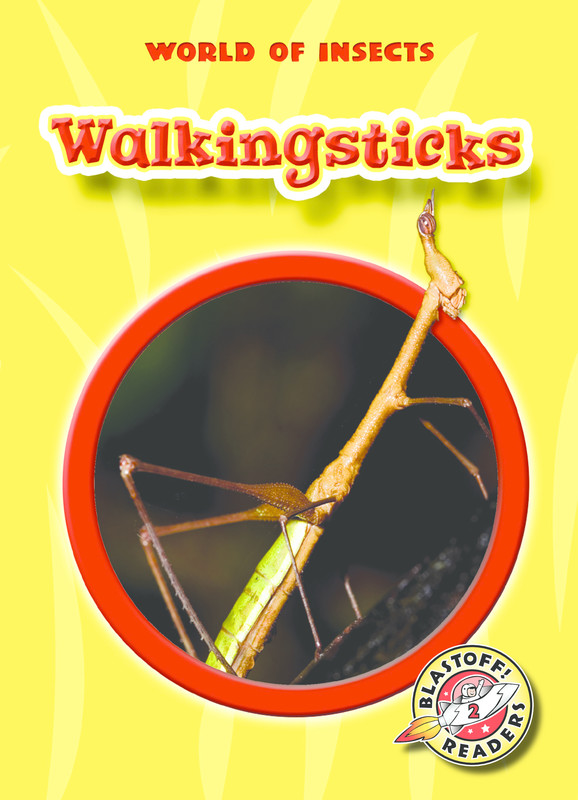 Walkingsticks, Emily K. Green
