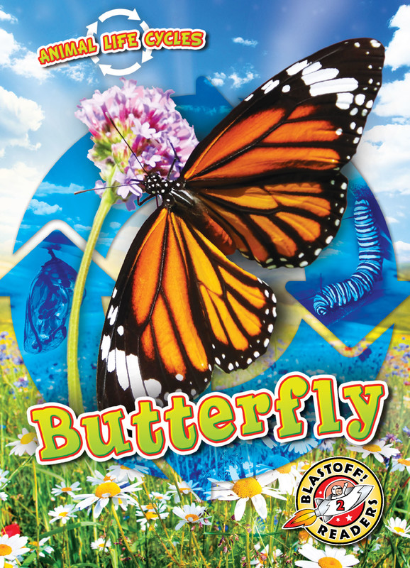 Animal Life Cycles: Butterfly, Rebecca Sabelko