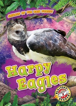 Harpy Eagles, Karen Latchana Kenney