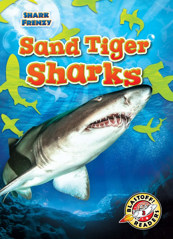 Sand Tiger Sharks, Thomas K. Adamson