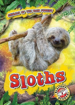 Sloths, Karen Latchana Kenney