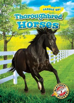Thoroughbred Horses, Rachel Grack