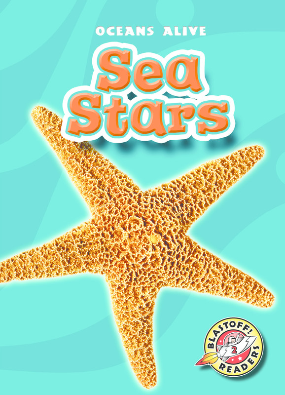 Sea Stars, Ann Herriges