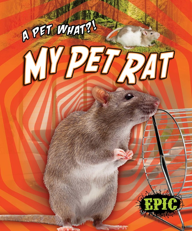 My Pet Rat, Paige V. Polinsky