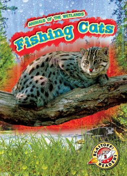 Fishing Cats, Karen Latchana Kenney
