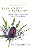 Leaning into Sharp Points, Stan Goldberg