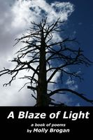 A Blaze of Light: A Book of Poems, Molly Brogan