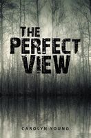 The Perfect View, Carolyn Young