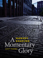 A Momentary Glory, Harvey Shapiro