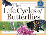The Life Cycles of Butterflies, Judy Burris, Wayne Richards