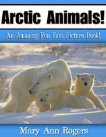 Arctic Animals, Mary Ann Rogers