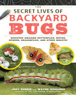 Secret Lives of Backyard Bugs, Judy Burris, Wayne Richards