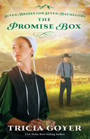 The Promise Box, Tricia Goyer