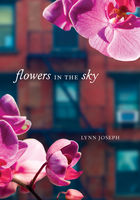 Flowers in the Sky, Lynn Joseph