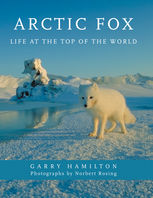 Arctic Fox, Garry Hamilton
