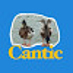 Cantic